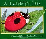 A Ladybug's Life (Nature Upclose (Paperback))
