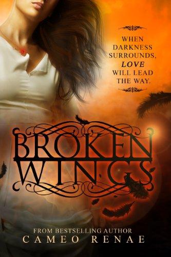 Broken Wings (Hidden Wings Series Book Two) -