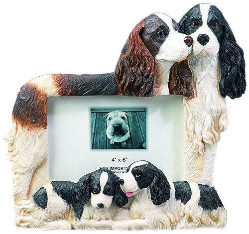Springer Spaniel Gift Picture Frame Holds Your Favorite 4x6 Inch Photo, A Hand Painted Realistic Looking Springer Spaniel Family Surrounding Your Photo. This Beautifully Crafted Frame is A Unique Accent to Any Home or Office. The Springer Spaniel Picture  by E&S Pets