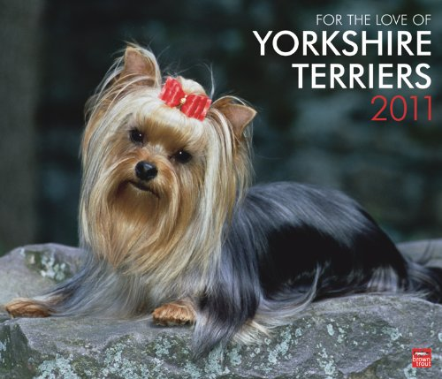 Yorkshire Terriers, For the Love of 2011 DLX