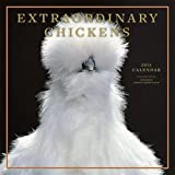 Extraordinary Chickens 2014 Wall Calendar thumbnail