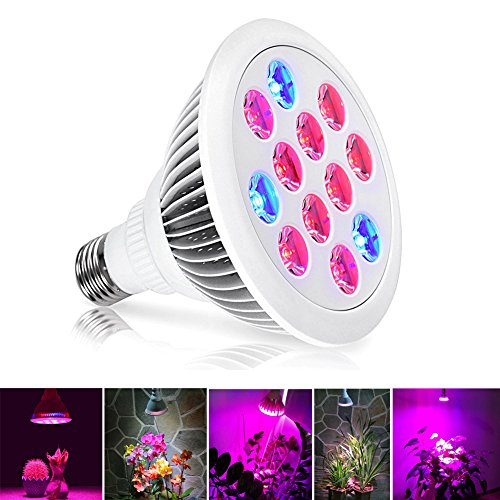 Led Grow Light Bulb 12w E26 E27 3 Brands 30 Beam Angle Full Spectrum Grow Lights For Indoor