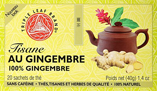 Cheap Triple Leaf Brand Herbal Tea, Ginger, 20-Count
