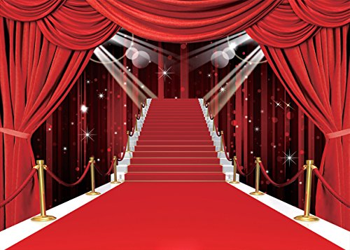 GoodsFederation 9x6ft Stage Lighting Red Carpet Seamless Pictorial Cloth Vinyl Photography Backdrop Customized Photo Backdrops Background Studio Props RM-032