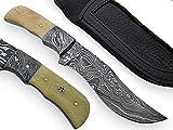 AishaTech Kimber Fixed Blade Hunting Knife Damascus steel blade and Bolster Bone Handle