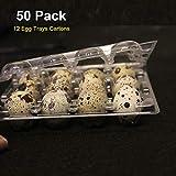 Quail Egg Cartons 50 Pack Each 12 Small Eggs