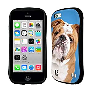 DIY Case Designs English Bulldog Popular Dog Breeds Hybrid Gel Back Case for Apple iPhone 5c by ruishername