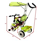 New 4-In-1 Kids Baby Stroller Tricycle Training Learning Toy Bike w/ Canopy Basket-Green