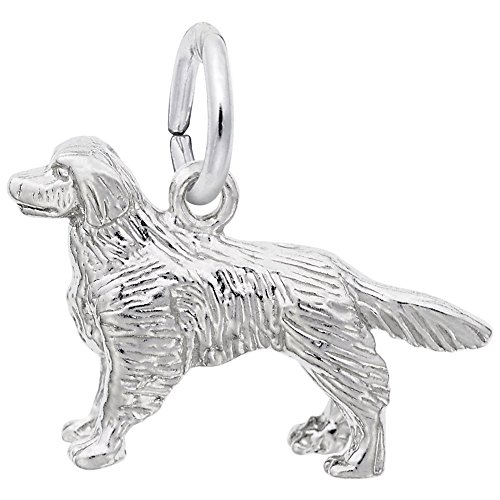 - Golden Retriever Charm In Sterling Silver, Charms for Bracelets and Necklaces
