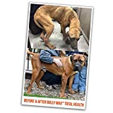 Bully Max Total Health 7-in-one Dog