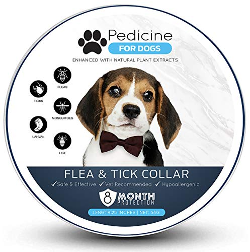 Pedicine Dog Flea Collar for Flea and Tick Treatment and Prevention | One Size Fits All