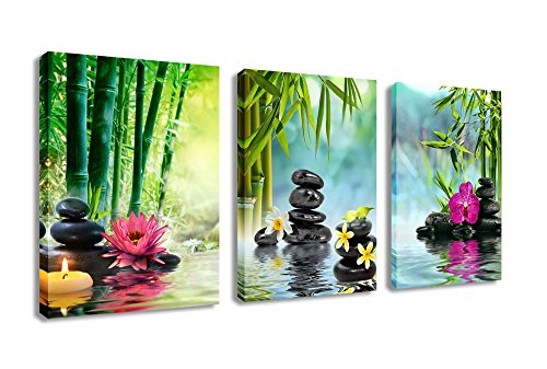 Amazon.com: Canvas Painting Wall Art Decor SPA Stone Green Bamboo ...