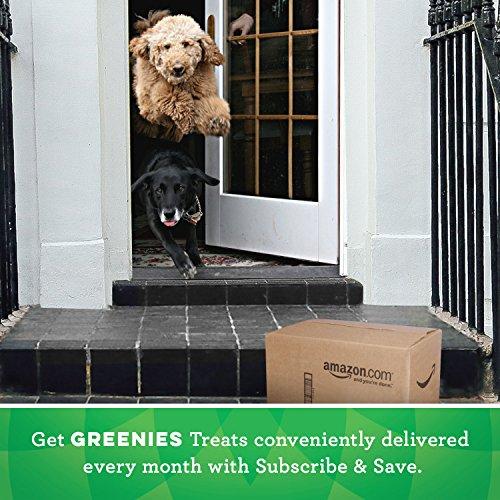 Large Product Image of Greenies Original Regular Size Dental Dog Treats, 36 Oz. Pack (36 Treats), Makes A Great Holiday Dog Treat