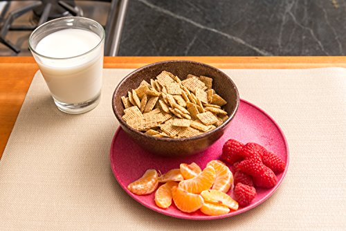 EVO Sustainable Goods 16 oz. Bowl Set, Dark Brown by EVO Sustainable Goods (Image #6)