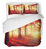 Emvency 3 Piece Duvet Cover Set Breathable Brushed Microfiber Fabric Autumn Fall Scene Beautiful Autumnal Park Beauty Nature Trees and Leaves Foggy Bedding Set with 2 Pillow Covers Twin Size