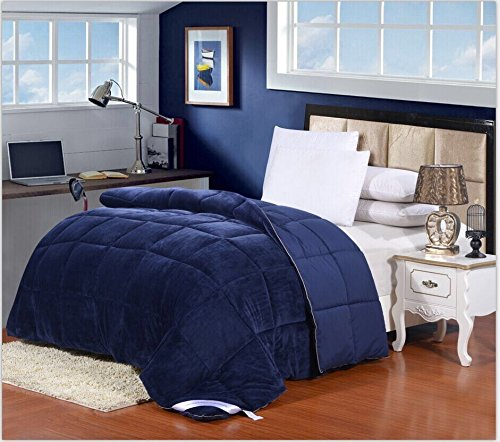 Flannel Goose Down Alternative Comforter , Reversible