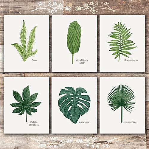 Tropical Leaves Wall Decor Art Prints (Set of 6) - Unframed - 6x6s   Botanical Prints Wall Art