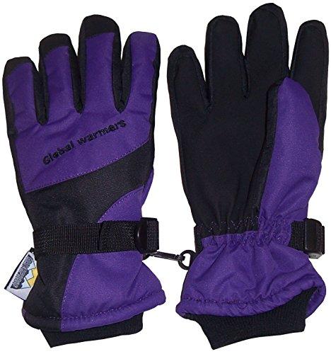 N'Ice Caps Adults Unisex Thinsulate and Waterproof Premier Colorblocked Ski Gloves (Medium, Onyx Black)