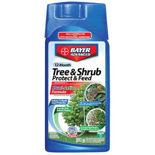 bayer-advanced-701810-12-month-tree-and-shrub-protect-and-feed-concentrate-32-ounce
