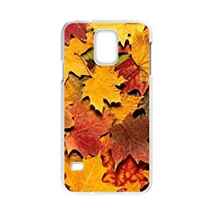 Autumn Maple Leaf Yellow Fashion Hard Case Cover for Galaxy S5