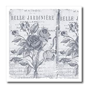 3dRose ht_79075_3 Vintage Belle Jardiniere Botanical-French Art-Iron on Heat Transfer for Material, 10 by 10-Inch, White