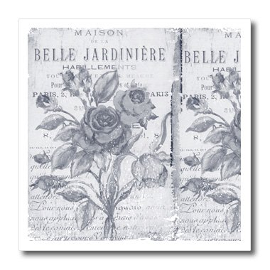 3dRose ht_79075_3 Vintage Belle Jardiniere Botanical-French Art-Iron on Heat Transfer for Material, 10 by 10-Inch, White ()