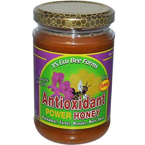 (Y.S. Eco Bee Farms, Antioxidant Power Honey, 13.5 oz (383 g) Y.S. Eco Bee Farms, Antioxidant Power Honey, 13.5 oz (383 g) - 2pcs)
