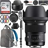 Sigma 50mm f1.4 DG HSM Art Lens Sony E-Mount Digital Full Frame APS-C Cameras 311965 77mm Multicoated UV, Polarizer & FLD Filter Kit Photography Backpack Bundle