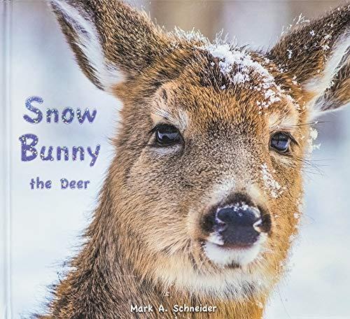 Snow Bunny the Deer