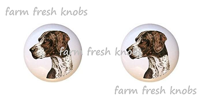 SET OF 2 KNOBS   German Short Haired Pointer Dog   Dogs   DECORATIVE Glossy