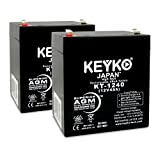 EnerSys Genesis (Yuasa) NP4-12 - 12V Volts 4Ah Amp Hour Home Alarm SLA Sealed Lead Acid Rechargeable Replacement battery AGM Genuine KEYKO KT-1240 F1 Terminal - 2 Pack