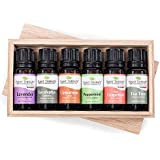 Essential oil sampler gift set in box (set #3). 6 Oils- Includes 100% Pure, Undiluted, Therapeutic Grade Essential Oils of Lavender, Eucalyptus, Cinnamon Cassia, Peppermint, Tea Tree and Grapefruit. 10 ml each. by Plant Therapy Essential Oils
