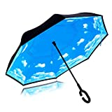 Strawberry Double Layer Wind-Proof, UV Proof Reverse Folding Inverted Umbrella Travel Umbrella with 'C' Shape Handle and Carrying Bag, Sky Blue