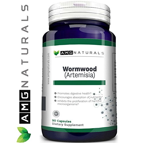 Artemisia Absinthium Natural Wormwood To Support Digestive Cleansing And Liver Health