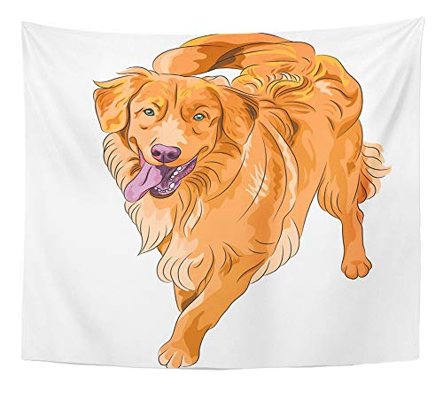 Emvency Tapestry Artwork Wall Hanging Smiling Staying Red Gun Hilarious Funny Dog Breed Nova Scotia Duck Tolling Retriever 50x60 Inches Tapestries Mattress Tablecloth Curtain Home Decor Print -