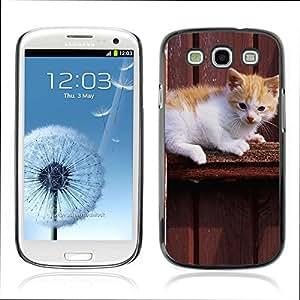 Carcasa Funda Case // V0000944 Cat Kitty Animal Pattern // Samsung Galaxy S3 i9300