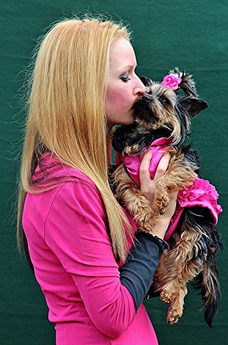 Home Comforts Acrylic Face Mounted Prints Hug Fashion Blonde Girl Kisses Puppy Love Print 14 x 11. Worry Free Wall Installation - Shadow Mount is Included.