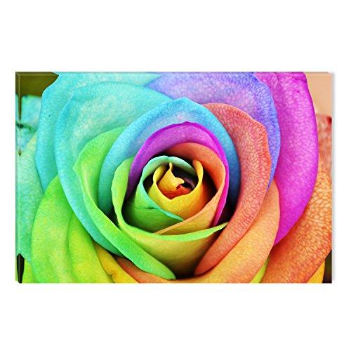 STARTONIGHT Canvas Wall Art Multicolor Rose Flower Abstract,