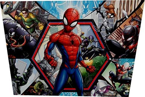 Stan Lee Signed Autographed 24x30 Canvas Print Marvel Spider-Man JSA V67860 from Cardboard Legends Online