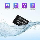 AXE MEMORY 64GB microSDXC Memory Card + SD Adapter