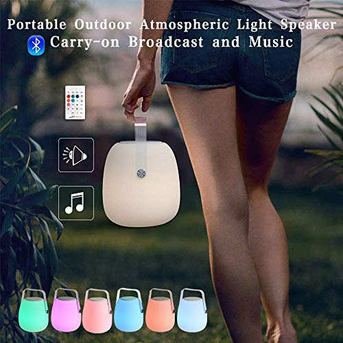 N&C Portable LED Light Bluetooth Speaker(10 watts),Color Changing Rechargeable Lantern,Night Light,Bedside Lamp,Table Lamp with Remote Control for Party,Bedroom,Outdoor,Camping