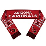 NFL Light Up Scarf