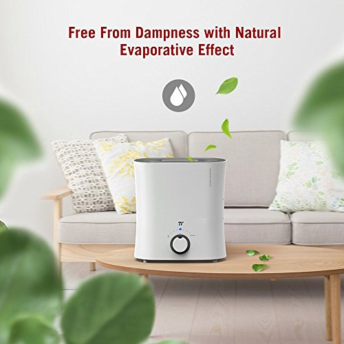 TaoTronics Evaporative Humidifier, Air Purifier, Germ-Free and Invisible Moisture with Wicking Filter, Top Fill Cool Mist Humidifiers for Bedroom, Office and Nursery -(2.5 L/0.66 gal, 110V) by TaoTronics (Image #2)