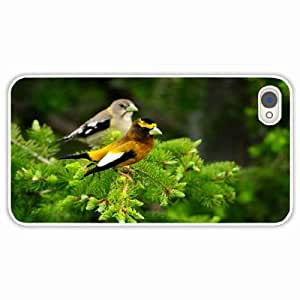 iPhone 4 4S Black Hardshell Case birds couple branch White Desin Images Protector Back Cover