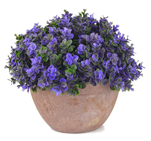 SAMYO 5 Inch Mini Artificial Plant Potted Lifelike Four-leaved Plant in Pot Fake Flower for Home Office Decor (Purple)