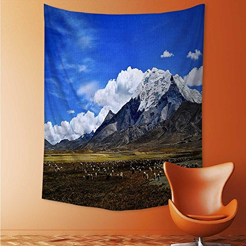(AuraiseHome Tibet Plateau Wall Hanging for Bedroom Living Room Dorm 54W x 72L Inch)