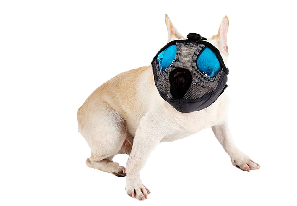 BbearT® Bozal para perro, suave para evitar mordeduras y masticar ...