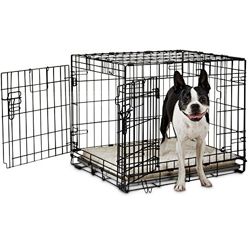 You&Me 2-Door Folding Dog Crate, 24