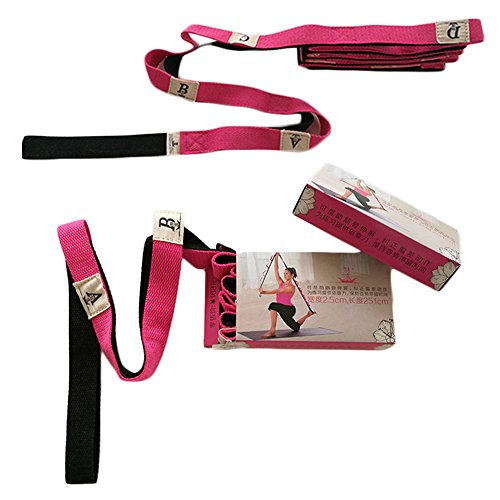 Rehab Kit Dvd (Stretching Strap With 10 Loops/Premium Quality Stretch Strap 98inch Long 0.94inch Wide Highly Effective For Athletes,Dancers Or For Physical Therapy,Grey (red))
