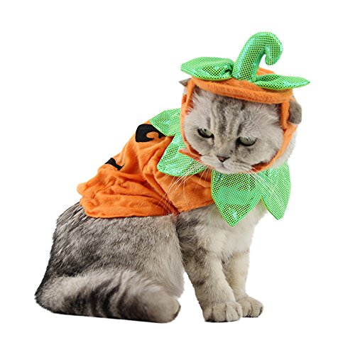 ANIAC Cat Pumpkin Hat Cloak Halloween Custume Cape Poncho for Kitty Small Medium Sized Dog (Cat Snake Costume)